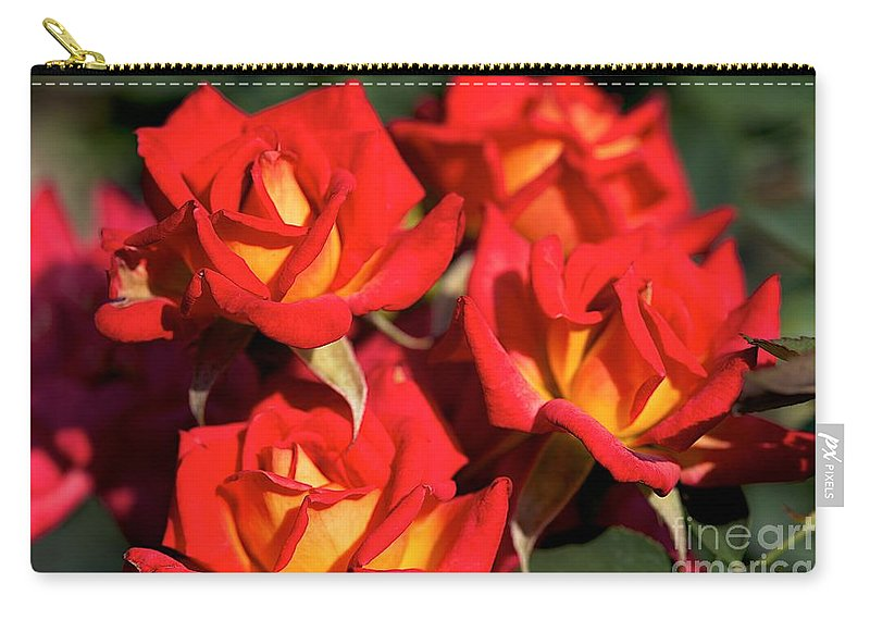 Red Flowers Carry-all Pouch featuring the photograph Over by Joseph Yarbrough