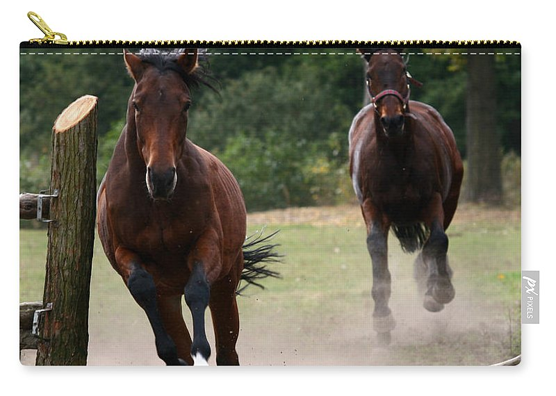 Horse Carry-all Pouch featuring the photograph Over The Fence by Angel Tarantella