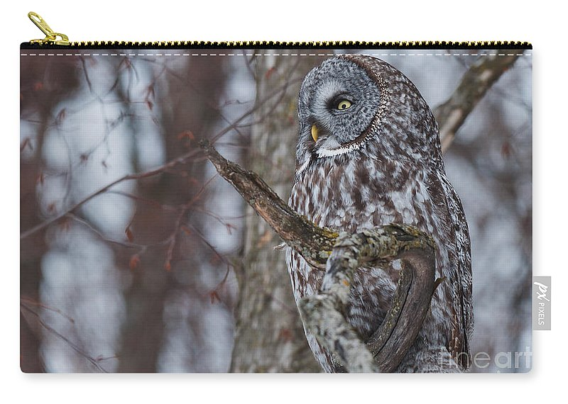 Owls Carry-all Pouch featuring the photograph Over There by Cheryl Baxter