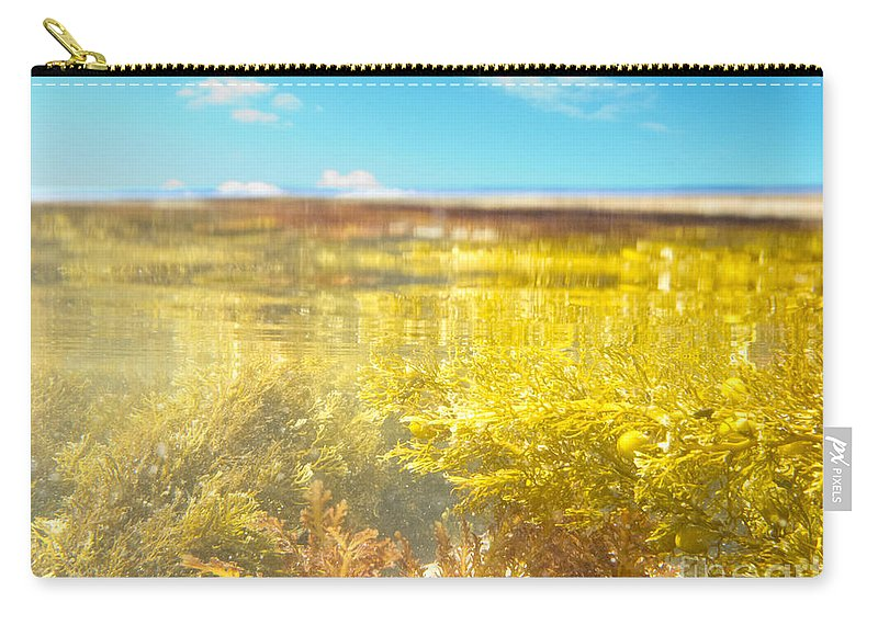 Above Carry-all Pouch featuring the photograph Over-under Split Shot Of Clear Water In Tidal Pool by Stephan Pietzko