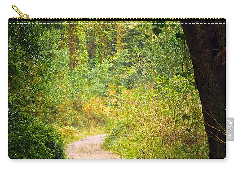 Autumn Carry-all Pouch featuring the photograph Pathway In The Woods by Carlos Caetano