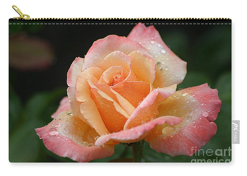 Rose Carry-all Pouch featuring the photograph Peaches And Cream by Living Color Photography Lorraine Lynch