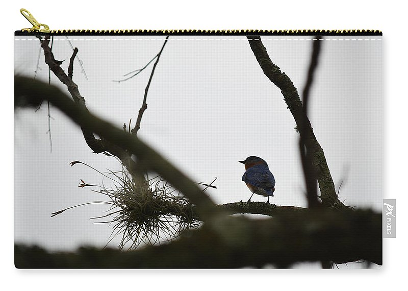 Blue Bird Carry-all Pouch featuring the photograph Perched by Linda Kerkau