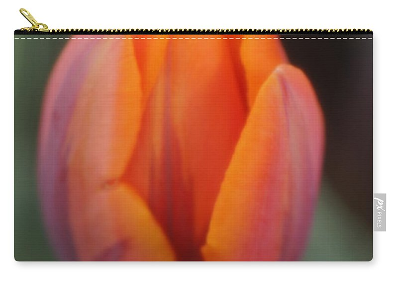 Tulips Carry-all Pouch featuring the photograph Pillow Soft by Jeffery L Bowers