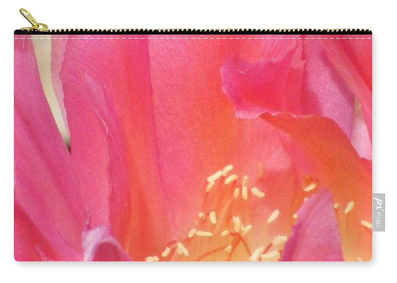 Cactus Flower Carry-all Pouch featuring the photograph Pink Petals by Michelle Cassella