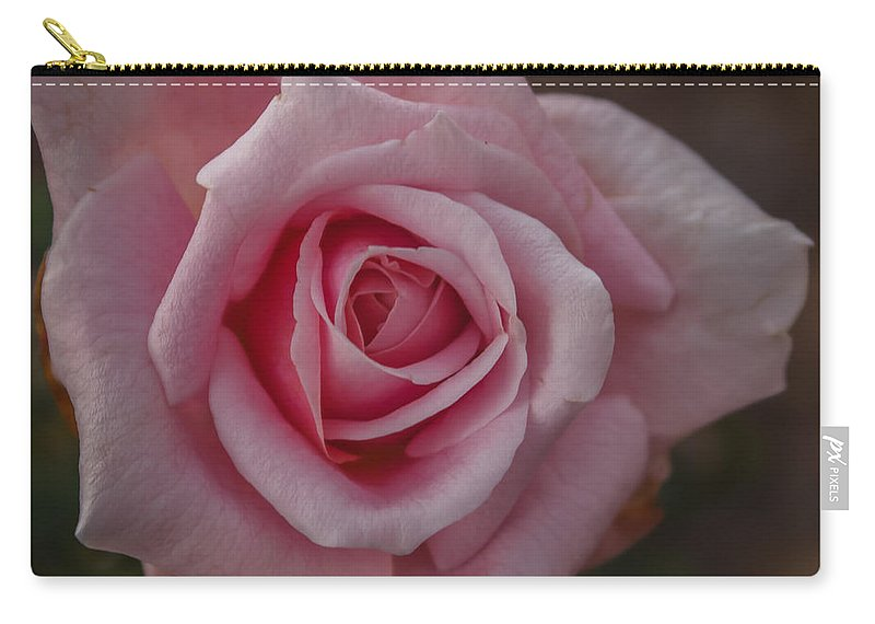 Florida Carry-all Pouch featuring the photograph Pink Rose by Jane Luxton
