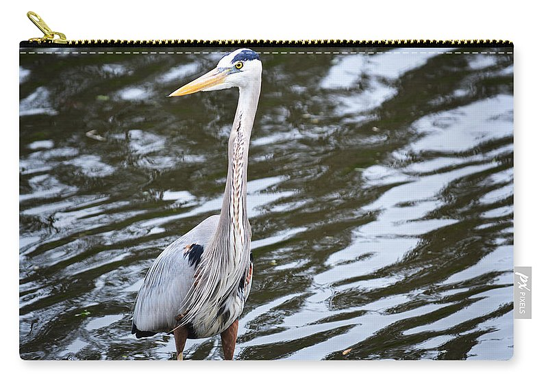 Florida Carry-all Pouch featuring the photograph Pond's Edge by Linda Kerkau