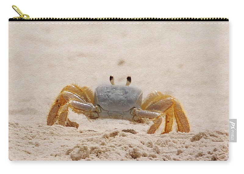 Crab Carry-all Pouch featuring the photograph Portrait Of A Ghost Crab by Judy Hall-Folde