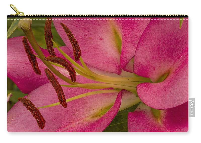 Lily Carry-all Pouch featuring the photograph Pretty In Pink by Jean Noren