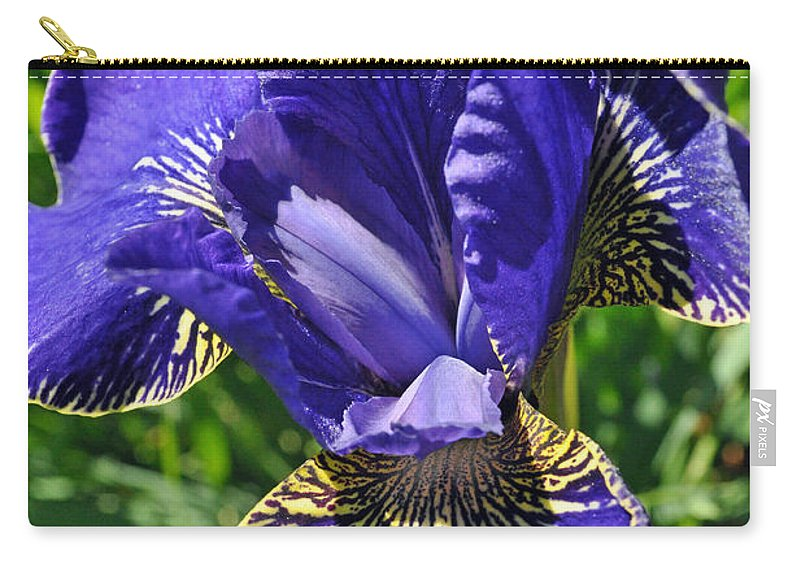 Flower Carry-all Pouch featuring the photograph Purple Iris by Tikvah's Hope