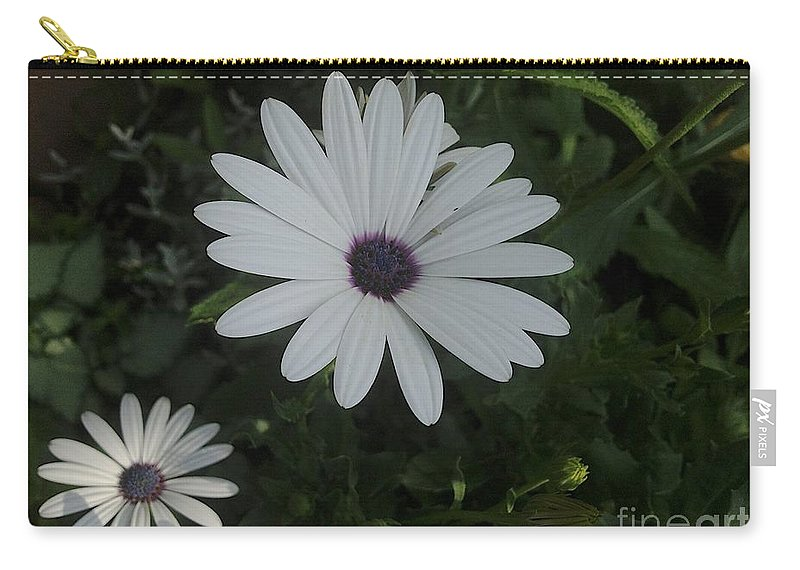 Potchen's Palace Carry-all Pouch featuring the photograph Purple by Joseph Yarbrough
