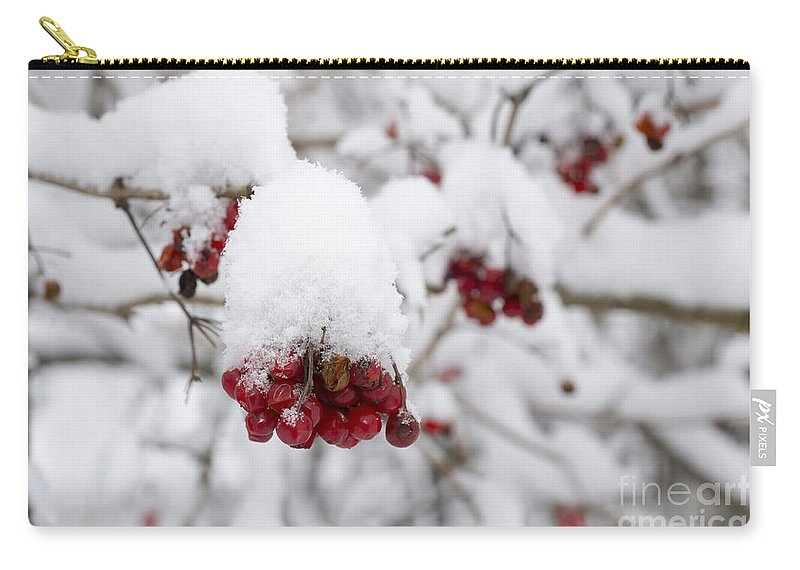 Fruit Carry-all Pouch featuring the photograph Red Fruit With Snow by Mats Silvan