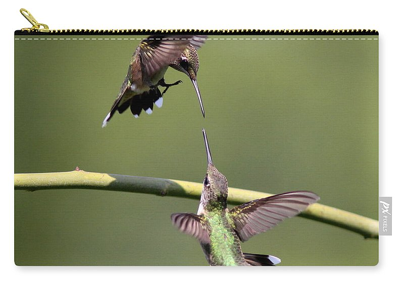 Hummingbird Carry-all Pouch featuring the photograph Ruby-throated Hummingbird by Travis Truelove