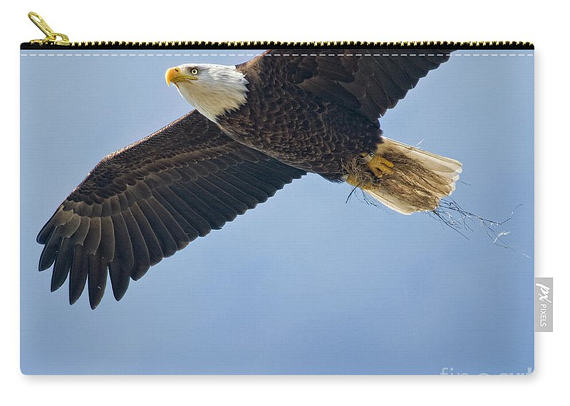 Bald Eagle Carry-all Pouch featuring the photograph Sailing by Claudia Kuhn