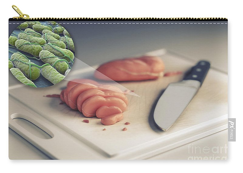 Bacterium Carry-all Pouch featuring the photograph Salmonella Contamination by Science Picture Co