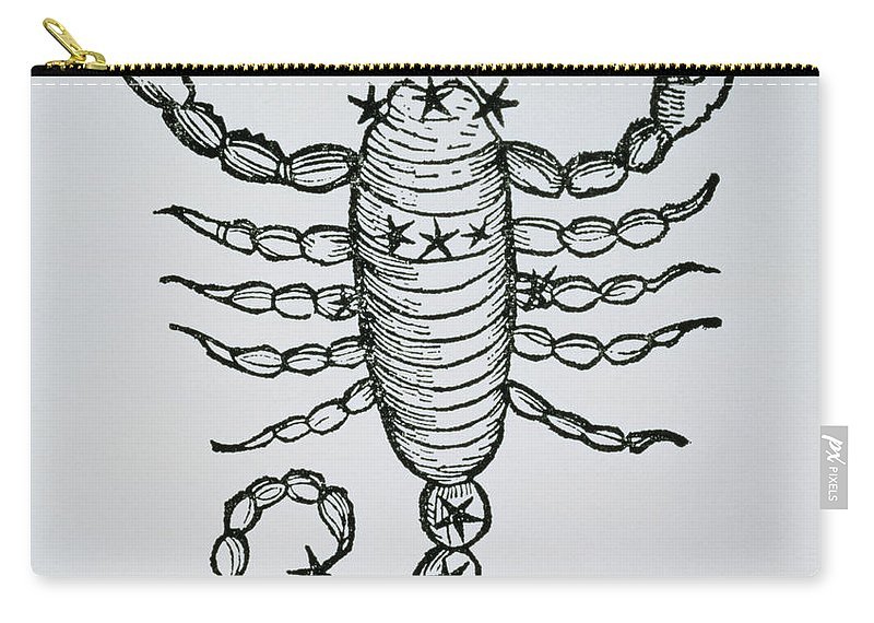 Scorpio Carry-all Pouch featuring the drawing Scorpio by Italian School