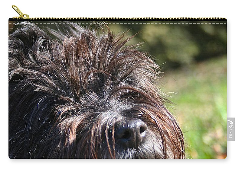Dog Carry-all Pouch featuring the photograph Scruffy by Susan Herber