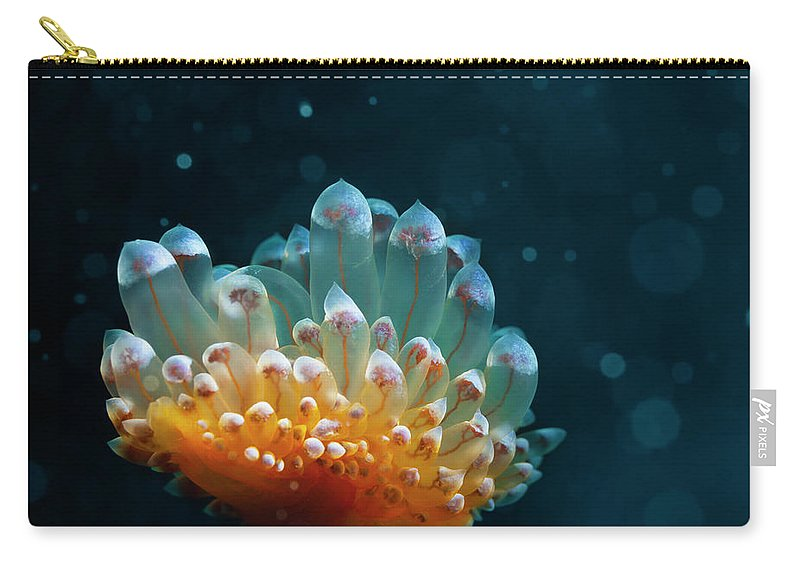 Underwater Carry-all Pouch featuring the photograph Sea Life by Ultramarinfoto