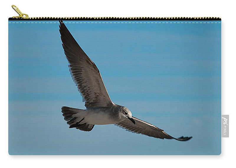 Sea Carry-all Pouch featuring the photograph Seagull In Flight by Photos By Cassandra