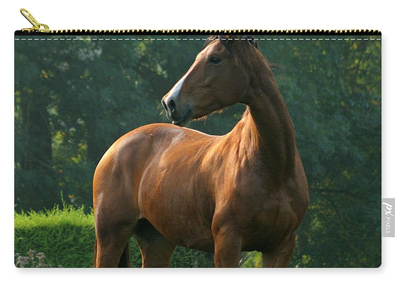 Horse Carry-all Pouch featuring the photograph Sentinel by Angel Ciesniarska