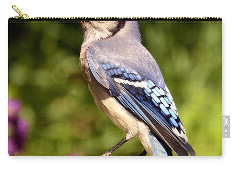 Bird Carry-all Pouch featuring the photograph Shades Of Blue by Lori Tambakis