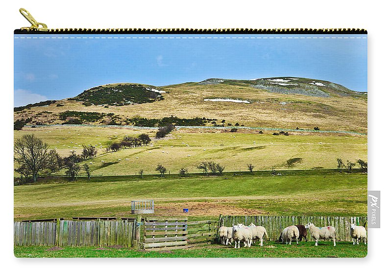 Agriculture Carry-all Pouch featuring the photograph Sheep In Meadow by Tom Gowanlock