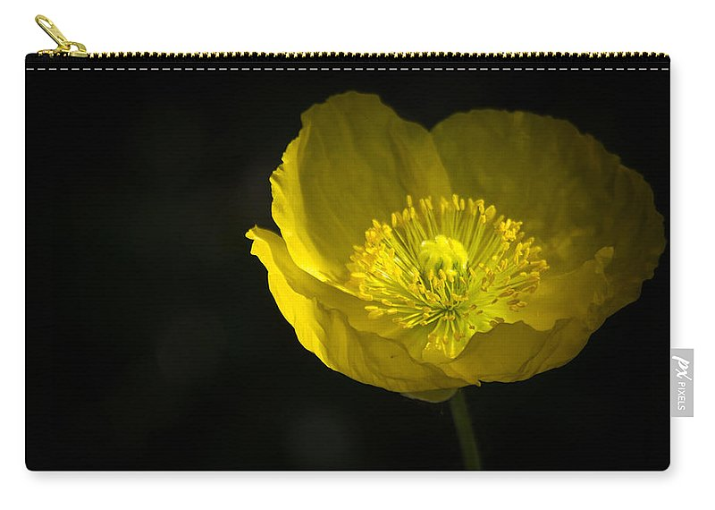 Yellow Poppy Carry-all Pouch featuring the photograph Simple Solitude by Saija Lehtonen