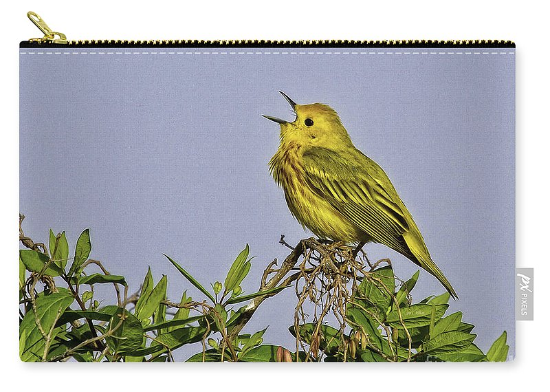 Songbird Carry-all Pouch featuring the photograph Singing by Jan Killian