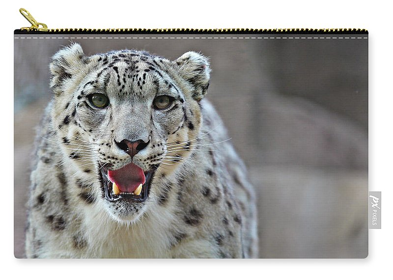 Animal Carry-all Pouch featuring the photograph Snow Leopard by Paul Fell