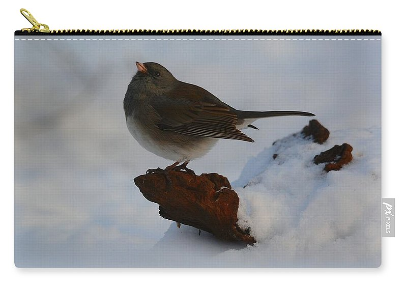 Bird Carry-all Pouch featuring the photograph Snowbird by Charles Owens