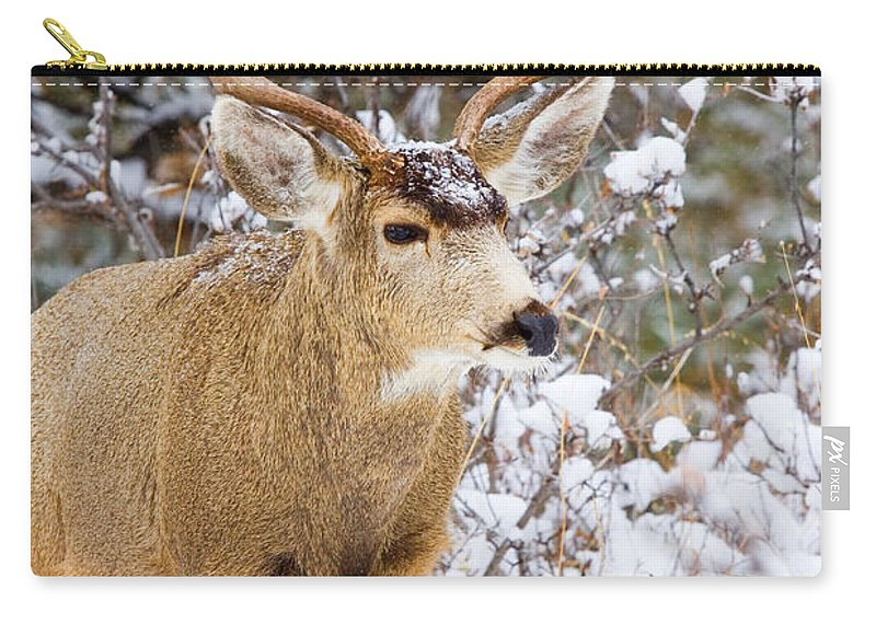 Deer Carry-all Pouch featuring the photograph Snowstorm Deer by Steve Krull
