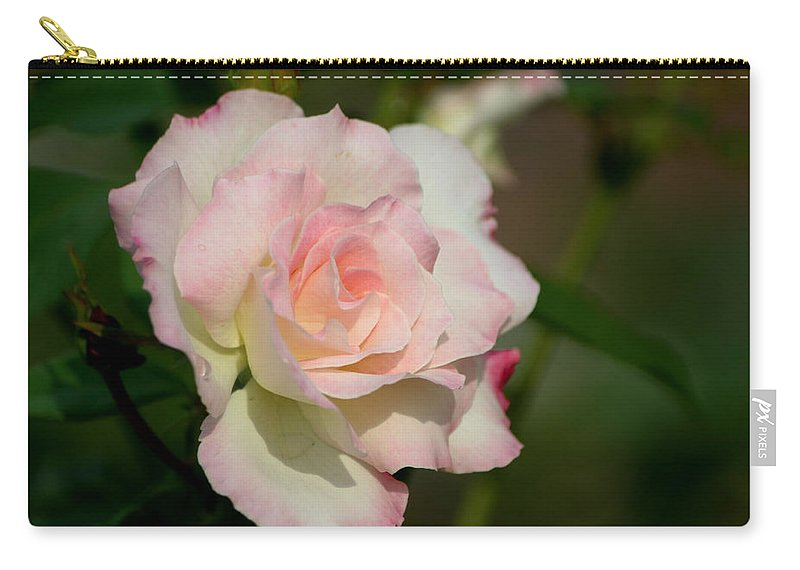 Roses Carry-all Pouch featuring the photograph Soft Pink by Living Color Photography Lorraine Lynch