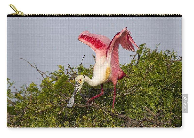 Doug Lloyd Carry-all Pouch featuring the photograph Spring Beauty by Doug Lloyd