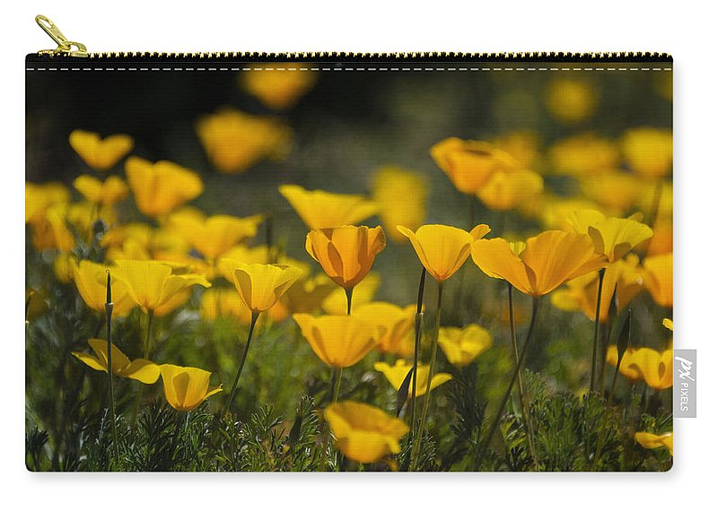 Poppies Carry-all Pouch featuring the photograph Springtime Poppies by Saija Lehtonen