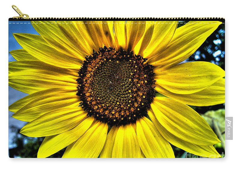 Sunflower Carry-all Pouch featuring the photograph Sunflower by Nina Ficur Feenan
