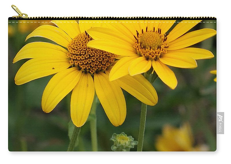 Sunflower Carry-all Pouch featuring the photograph Sunflowers by Ernie Echols