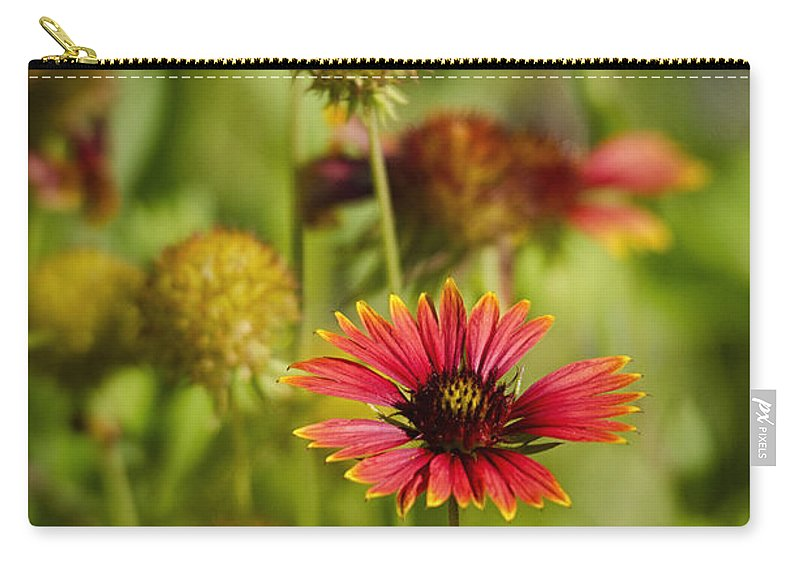 Gaillardia Carry-all Pouch featuring the photograph The Colors Of Summer by Saija Lehtonen
