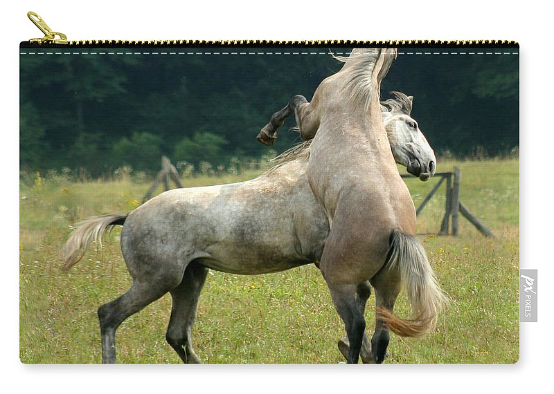 Horse Carry-all Pouch featuring the photograph The Fight by Angel Tarantella