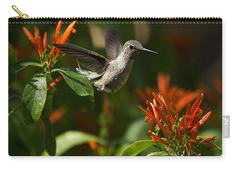 Hummingbird Carry-all Pouch featuring the photograph The Hummingbird Hover by Saija Lehtonen