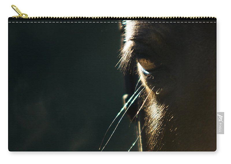 Horse Carry-all Pouch featuring the photograph the Look by Angel Ciesniarska