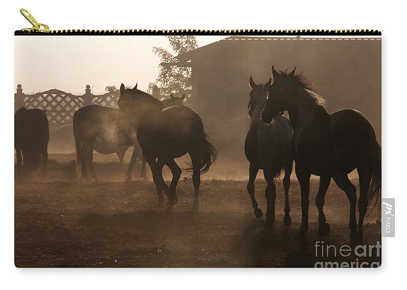 Misty Morning Carry-all Pouch featuring the photograph The Misty Morning by Angel Ciesniarska