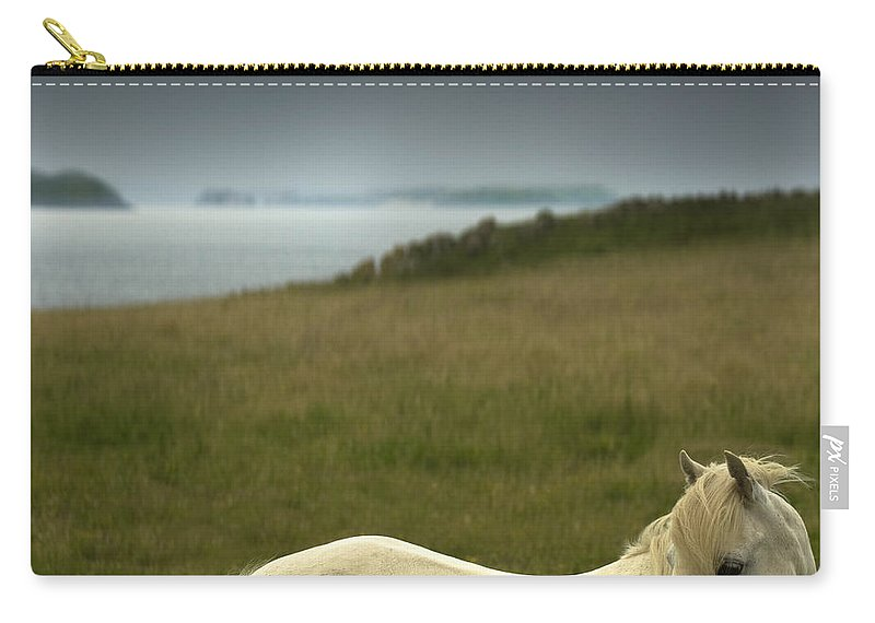 Welsh Pony Carry-all Pouch featuring the photograph The Welsh Pony by Angel Ciesniarska