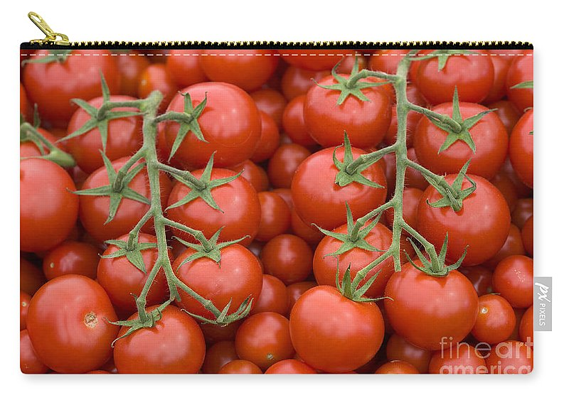 Tomato Carry-all Pouch featuring the photograph Tomato On The Vine by Lee Avison