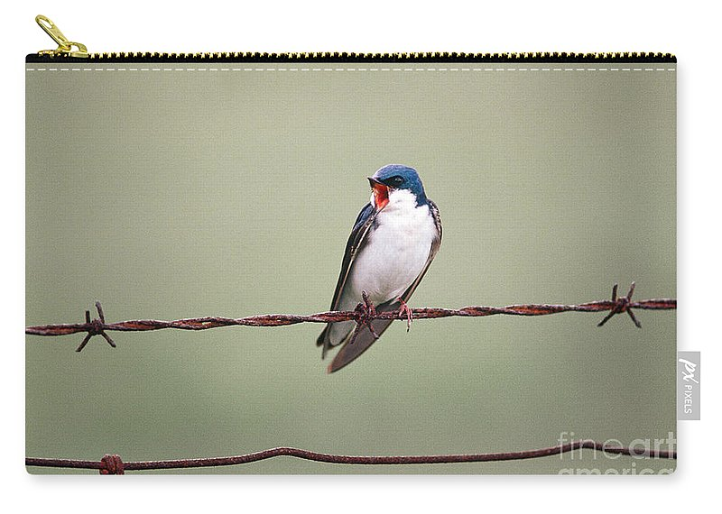 Song Birds Carry-all Pouch featuring the photograph Tree Swallow by James L. Amos