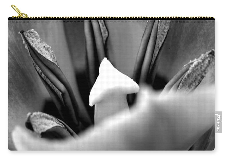 Amsterdam Carry-all Pouch featuring the photograph Tulip by Deborah Benbrook