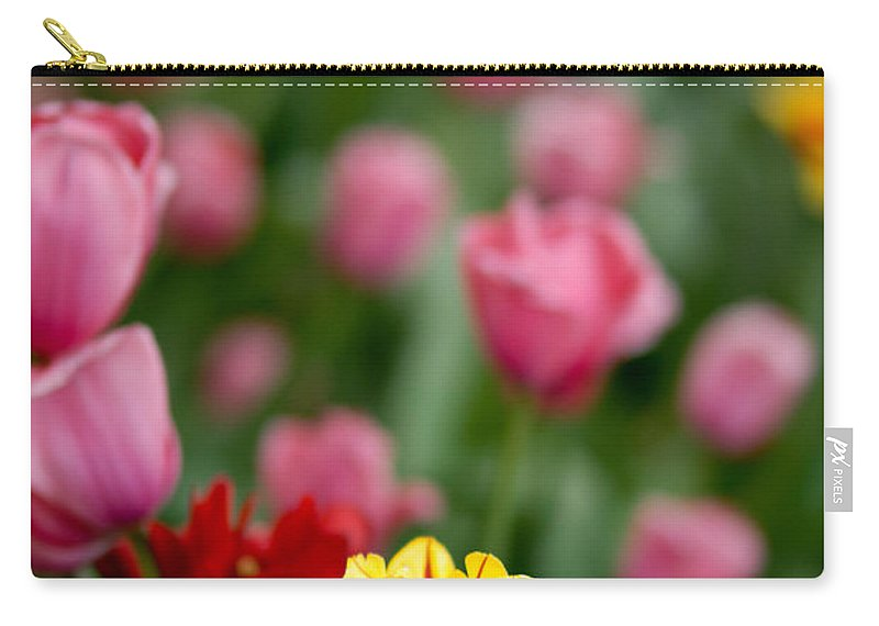 Vibrant Color Carry-all Pouch featuring the photograph Tulips by Amy Cicconi
