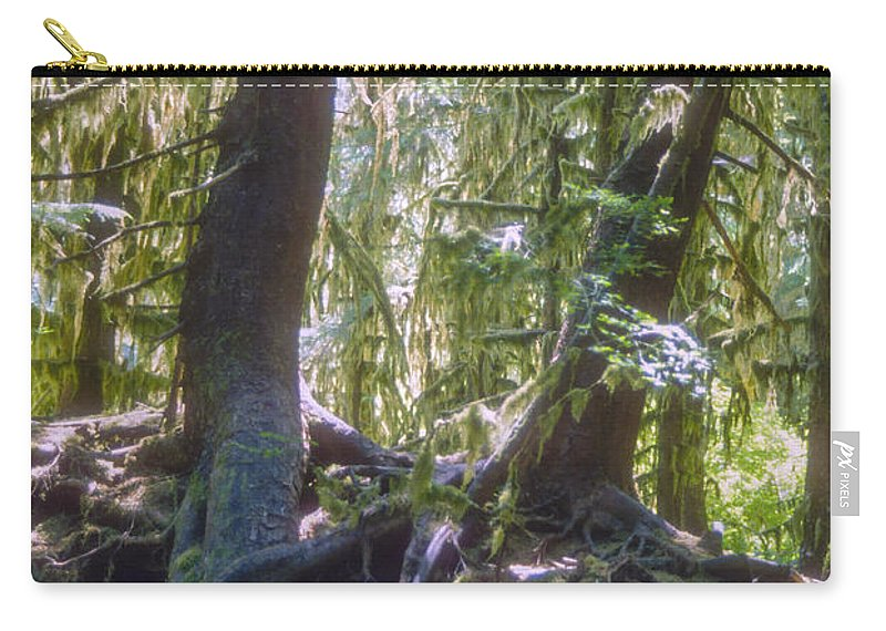 Hoh Rainforest Olympic National Park Washington Parks Tree Trees Nature Rain Forests Moss Landscape Landscapes Carry-all Pouch featuring the photograph Twisted Around A Rock by Bob Phillips