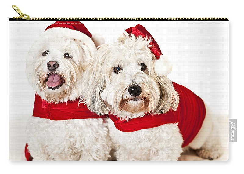 Dogs Carry-all Pouch featuring the photograph Two Cute Dogs In Santa Outfits by Elena Elisseeva