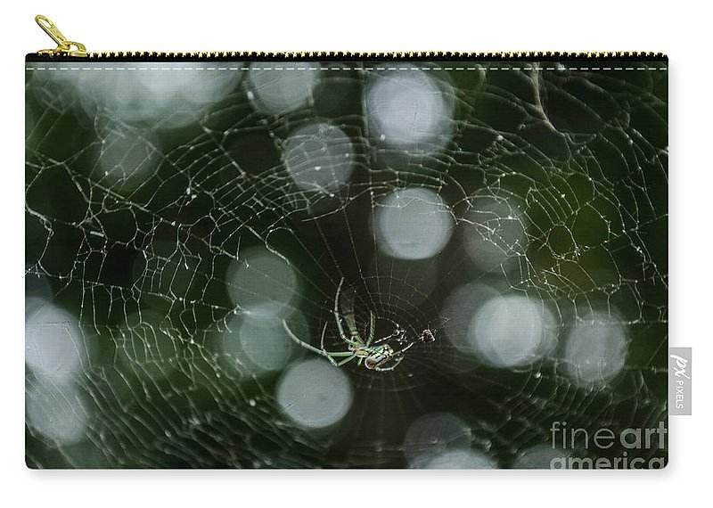Insect Carry-all Pouch featuring the photograph Venusta Orchard Spider by Donna Brown