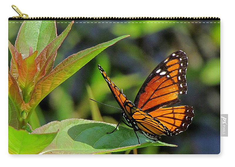 Viceroy Carry-all Pouch featuring the photograph Viceroy 2 by J M Farris Photography